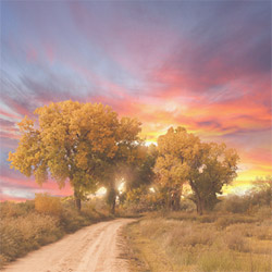 Blank CD jacket cover, Road Leading Into Sunrise